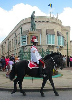 A member of the mounted unit trots past the statue of Lord Horatio Nelson during the parade for the 375 anniversary celebrations of the Parliament of Barbados Photo credit Barbados Tourism Encyclopedia Beautiful Barbados 2/28/2014