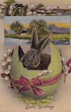 PETER COTTONTAIL~ BUNNY VINTAGE CARD