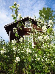 Pulsa Finland