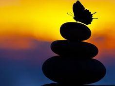 3 Hour Zen Meditation Music: Soothing Music, Healing Music, Calming Music, Relaxation Music ☯2445 - YouTube