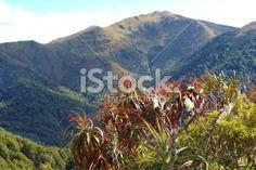 Mountain Neinei with Distant Mt Arthur, The Kahurangi National Park Royalty Free Stock Photo
