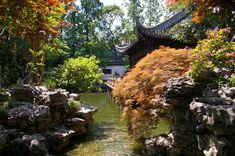 This picture of the Yuyuan Garden in Shanghai (created in shows all the elements of a classical Chinese garden – water, architecture, vegetation, and rocks. Chinese Plants, Chinese Garden, Shanghai, Classic Garden, Chinese Landscape, Green Business, Garden Types, Water Garden, Dream Garden