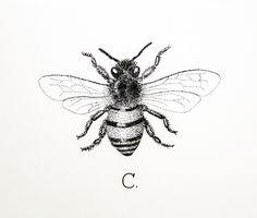 Honey Bee Tattoo Black And White Honey bee tattoo designs
