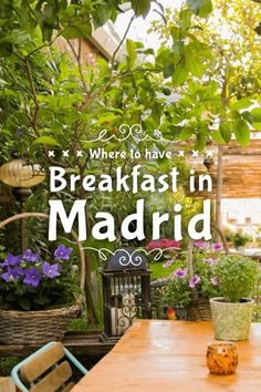 Explore best breafasts in the city of Madrid. Spain Travel Guide, Europe Travel Tips, Backpacking Europe, European Travel, Madrid Nightlife, Madrid Restaurants, Breakfast In Madrid, Madrid Food, Madrid Travel