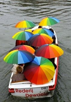 Nos guarda chuva