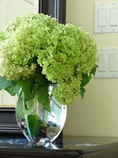 #living room, bundles of green hydrangeas in gold spray-painted mason jars for fireplace.