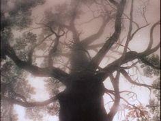 Doctor Basura: Érase una vez Yuri Norstein: Un caballo en la niebla