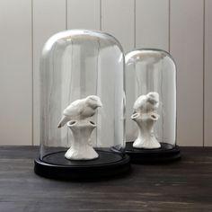 Glass Display Bell Jars - Graham & Green