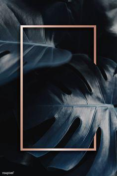 Golden frame on a tropical background Instagram Png, Photo Instagram, Framed Wallpaper, Screen Wallpaper, Great Backgrounds, Wallpaper Backgrounds, Framed Leaves, Tropical Background, Most Beautiful Wallpaper