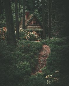 Little cottage in the woods. - Architecture and Urban Living - Modern and Historical Buildings - City Planning - Travel Photography Destinations - Amazing Scary Places Cabin In The Woods, Cottage In The Woods, Nature Aesthetic, Witch Aesthetic, Aesthetic Pics, Aesthetic Dark, Future House, Witch Cottage, Witch House