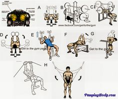 Gym Workout Exercise For Bodybuilding