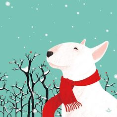 Uplifting So You Want A American Pit Bull Terrier Ideas. Fabulous So You Want A American Pit Bull Terrier Ideas. Perros Bull Terrier, Chien Bull Terrier, Fox Terrier, Pitbull Terrier, English Bull Terriers, Dog Illustration, Illustrations, Happy Dogs, Beautiful Dogs