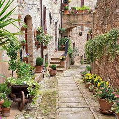 A #MomentofZen: Exploring new paths and food while in Italy. by jetsetterdotcom