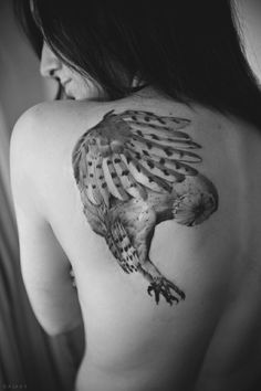 Shoulder Flying Owl Tattoo – I fucking love tattoos Owl Tattoo Design, Tattoo Designs, Great Tattoos, Beautiful Tattoos, Body Art Tattoos, Awesome Tattoos, Female Tattoos, Tattoo Son, Get A Tattoo