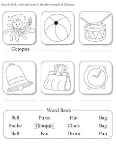 Look at the picture and write the correct word in the