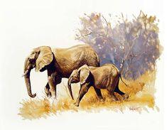 Prentresultaat vir ted hoefsloot African Artists, Holland, Ted, Art Gallery, Elephant, Landscape, Studio, Drawings, Animals