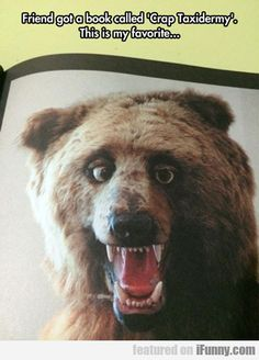 it looks like either a really realistic animatronic bear from a chuck cheese type place...or fridays at freddy's
