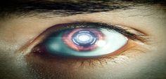 Presidente do Sebrae alerta para 'exterminadores fiscais do futuro' - Blog Skill