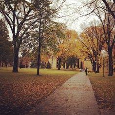 Campus is getting quiet as mid-semester break looms. #fall #october #moorhead #cordmn #leaves