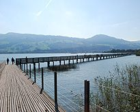 Wooden Foot Bridge across Lake Zurich at Rapperswil Switzerland Malta, Lake Zurich, The Other Side, Bridges, Switzerland, Places Ive Been, Medieval, Greece, Most Beautiful
