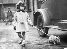 A young exhibitor arrives with her kitten on a lead at the National Cat Club show at Crystal Palace    London, December 2, 1931
