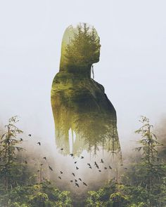 Shape of Nature - Art Print   Forests   Woman   Trees   Birds