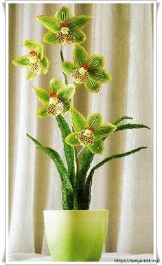 Orchidee di perline.