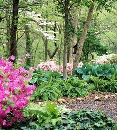 Features That Create an Outstanding Garden Define Add height and define outer edges with earthen berms. Take your garden into autumn with these planning tips. Rock Garden Design, Rock Garden Plants, Japanese Garden Design, Love Garden, Shade Garden, Dream Garden, Brick Garden, Courtyard Design, Garden Modern