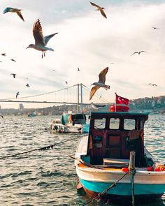 Uploaded by B O S P H O R U S. Find images and videos about istanbul on We Heart It - the app to get lost in what you love. Istanbul City, Istanbul Travel, Vacation Places, Places To Travel, Places To Go, Hagia Sophia Istanbul, Turkey Places, Turkey Photos, Grand Mosque
