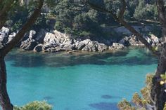 Cala delle alghe Isola d'Elba - Cavo