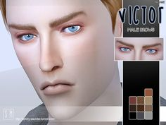 A gentle set of male brows in 10 shades.  Found in TSR Category 'Sims 4 Facial Hair'