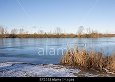 #Frozen #Lake #Kings #Village #Landscape @alamy #alamy #nature #landscape #winter #austria #burgenland #outdoor #season #bluesky #stock #photo #portfolio #download #hires #royaltyfree