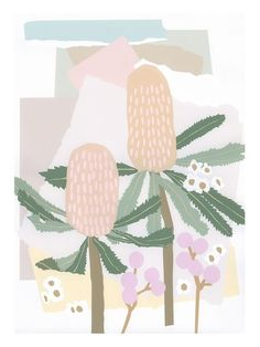This art print is part of a series of works based on Sunshine Coast native flora. A fine art print in limited edition of available in three sizes. This print has been carefully and skilfully reproduced to replicate the original painted artwork. All pr Matisse, Collages, Australian Native Flowers, Australian Plants, Australian Animals, Sun Art, Plant Art, Art Mural, How To Make Notes