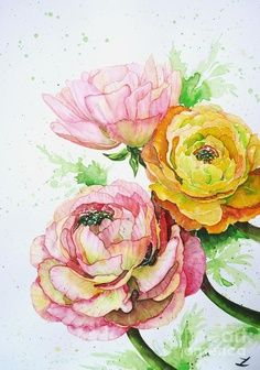 Ranunculus Flowers, Watercolour painting by Zaira Dzhaubaeva Art Aquarelle, Watercolour Painting, Watercolor Flowers, Painting & Drawing, Watercolors, Art Floral, Floral Artwork, Floral Paintings, Botanical Illustration