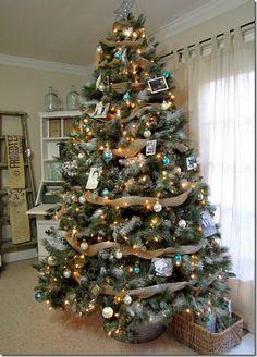 Genealogy #Christmas tree