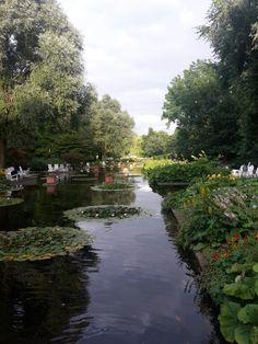Ein schöner Park in Hamburg