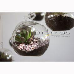 www.pierros.gr