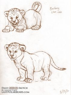 Studies of African lion cubs, with a focus on weighting and balance. Description from lastpolarbears.com. I searched for this on bing.com/images