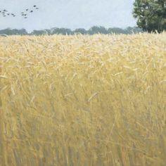 Ron Kingswood, Wheat Field