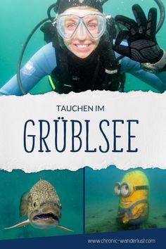 Tauchen im Alpenaquarium Grüblsee Reisen In Europa, Weekend Trips, Wanderlust, Movies, Movie Posters, Bucket, Places, Diy, Adventure Trips