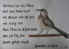 suid afrikaans taal - Google Search