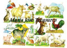 Antiguos Cromos Pegatinas Animales 3  por MariaJoseTreasures