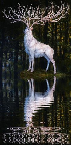 It also appears as an impetus to quest--the white stag or hart often appears in the forests around King Arthur's court, sending the knights off on to adventure against gods and fairies.