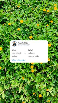 Try to give more than what you have promised to your client and you'll never lose one. #clientservicing #providevalue #clientsatisfaction #agencylife #TarunSpeaks Positive Vibes Only, Digital Marketing, Herbs, Cards Against Humanity, Positivity, Life, Herb, Optimism, Medicinal Plants