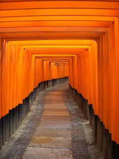 Fushimi Inari Shrine, Kyoto, Japan... one of the most amazing places we've been... known as The Shrine of 10,000 Gates (torii gates). The gates form a Bengal Orange tunnel... magical!