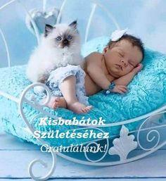 Bassinet, Kids Rugs, Blue, Furniture, Ragdoll Cats, Home Decor, Crib, Decoration Home, Kid Friendly Rugs