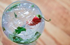 Chilli Gin and Tonic.   16 Refreshing And Creative Gin And Tonic Cocktails