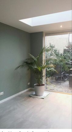 Living Room Green, Paint Colors For Living Room, Green Rooms, Home Living Room, Living Room Decor, Gray Bedroom Walls, Bedroom Green, Grey Walls, Home Wall Colour