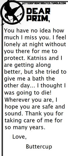 [[Dear Prim,  You have no idea how much I miss you. I feel lonely at night without you there for me to protect. Katniss and I are getting along better, but she tried to give me a bath the other day… I thought I was going to die!  Wherever you are, I hope you are safe and sound. Thank you for taking care of me for so many years.  Love,  Buttercup]]