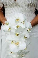 Dicas inesquecíveis para noivas modernas: Bouquets